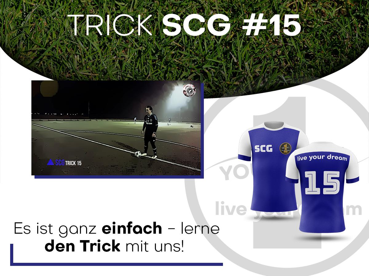 trick15-niem