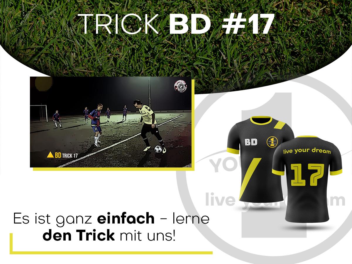 trick17-niem